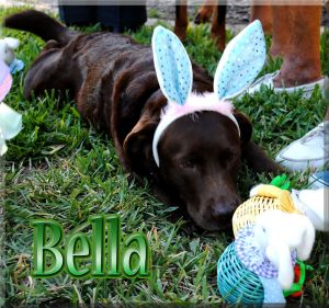 Bella on Easter Sunday 4/8/2012