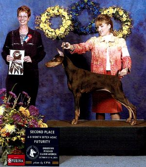Logres bred Kafka daughter at the 2004 DPCA National