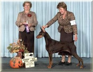 Can Ch. Logres' Weihaiwej  - by Ch. Trotyl de Black Shadow out of Logres Brentina